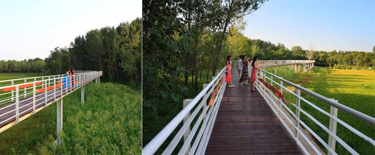热门标签:  景观园林 公园 俞孔坚 河北 秦皇岛