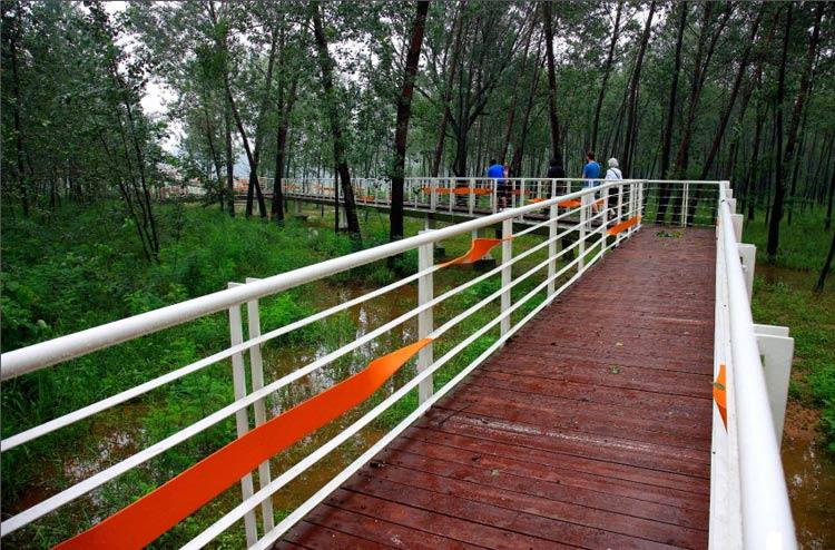 秦皇岛森林公园