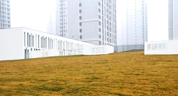 项目名称:齐悦幼儿园   项目地点:山东省淄博市   建筑设计:清华大学